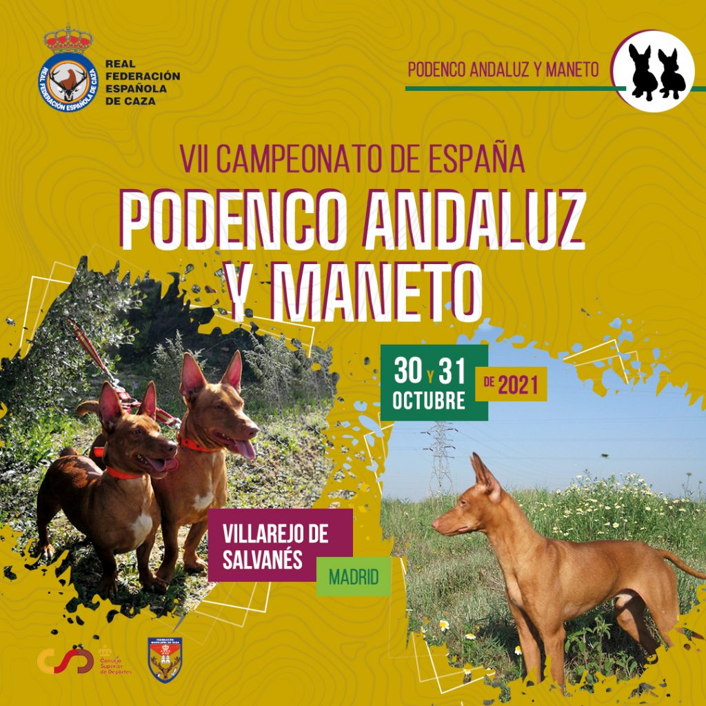 CE Podenco Andaluz y Maneto
